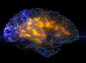 UCSF Neuroscape Lab Tour | Mission Bay