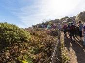 National Take a Hike Day at the Presidio   2019