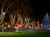 Concord Tree-Lighting, Carriage Rides & Mayor's Sing-Along | Todos Santos Plaza