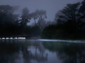 Free Haunted Hike at Stow Lake | Golden Gate Park