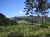 CANCELED: 50 Years of Saving San Bruno Mountain | South SF