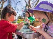 2020 Arbor Day Festival | Palo Alto