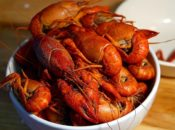 Harley-Davidson's Annual Free Crawfish Boil | San Jose