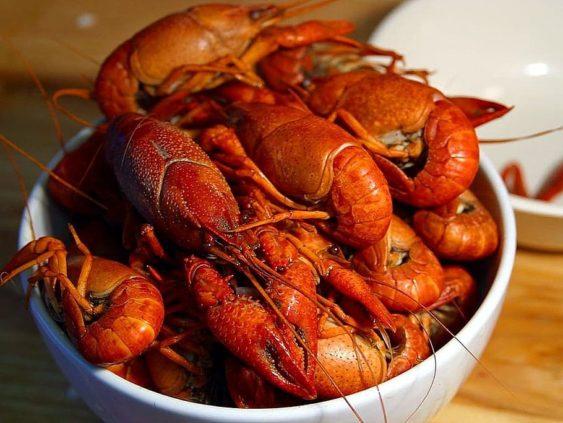 Claws crawfish drink food 563x423
