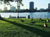 Lake Merritt Clean Up and Contest