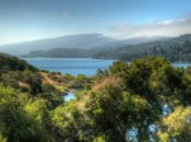 13 San Mateo County Parks Reopen Today