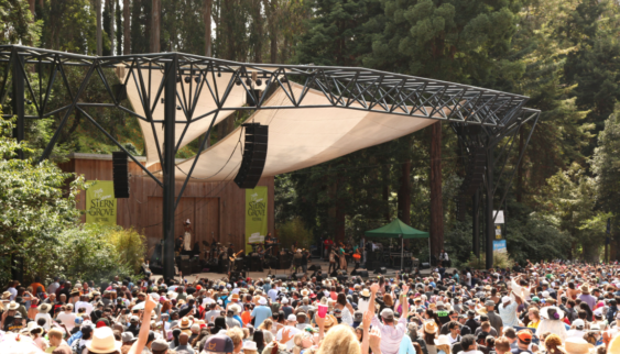 Sterngroveofficial 563x322
