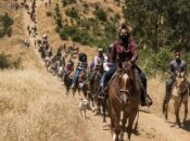 """""""Ride Out To Vote"""" Horseback Protest to the Ballot Box"""