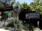 The UC Botanical Garden is Reopening July 22nd