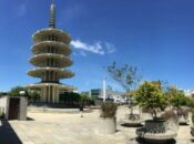 """Japantown's New """"Picnic at the Plaza"""" Outdoor Dining 