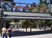 Bay Area Doctors Help Oakland Zoo's Sick Hyena for Free