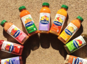"Bay Area Smoothie Brand ""Odwalla"" Shuts Down"