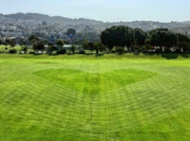 "Big ""Heart"" Grass Art Spotted in Balboa Park"