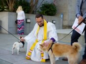 Virtual Event: The Feast of St. Francis & Blessing of the Animals