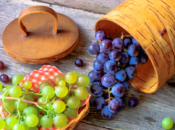Grapes Are Now In Season at Your Farmers Market