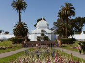 "SF's ""Conservatory of Flowers"" Reopens on Oct. 1"