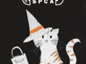 East Bay SPCA's Meow & Howl-O-Ween Drive-Thru