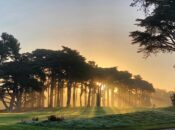 SF's 9-hole Golf Course Reopens at TPC Harding Park
