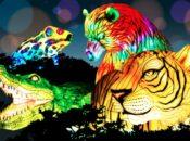 """Oakland Zoo's """"Glowfari"""" Lantern Festival is Back (Feb. 5)"""