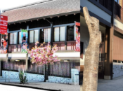 Japantown's Cherry Blossom Trees Were Vandalized