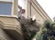 SF Man's Christmas Tree Trick Shot Goes Viral