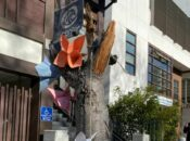 $30K Raised for Japantown's Cherry Blossom Trees After Vandalism