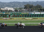 Golden Gate Fields Racetrack Turns Into Drive-Thru Vaccination Site