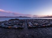 Vandals Destroy SF's Lands End Labyrinth