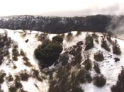 Bay Area Sees Rare Snow: Photos & Videos