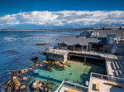 Monterey Bay Aquarium Reopens May 15