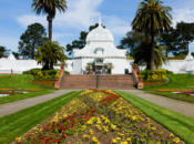 """SF's """"Conservatory of Flowers"""" Reopens March 5"""