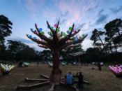 """Golden Gate Park's """"Lighted Forest"""" Now Open Until 9:30p"""