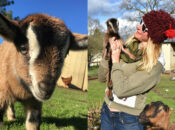 A Day of Baby Goat Hugs (Really!) is Coming to SF