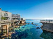Monterey Bay Aquarium Plans May 2021 Reopening