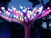 Final Days: SF's Lighted Forest Ends on April 4
