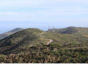 San Bruno Mountain: Rare Plants & Unique Geology