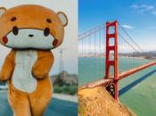 """""""Bearsun"""" Life-Size Teddy Bear's Final Day in San Francisco"""