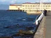 Car Submerged in the Bay at Marina Green
