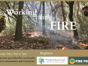 Working with Fire: Prescribed Burning in the Bay Area