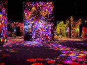 "$15 Tix: SF's New Immersive Art Show ""teamLab Continuity"" (Asian Art Museum)"