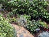 Gardening 101, Reducing Pests & Water Usage