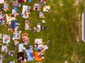 "Berkeley's Summer Outdoor Movie Night: ""Soul"""