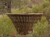 Marin Art and Garden Center: Behind the Scenes at the Basketry Garden