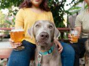 """Barks & Brews"" Pet-Friendly Yappy Hour w/ Trvia + Free Drink Ticket (Oakland)"