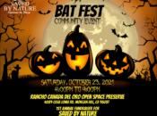"""""""Bat Fest"""" Community Event w/ Live Bats & Owls (Morgan Hill)"""